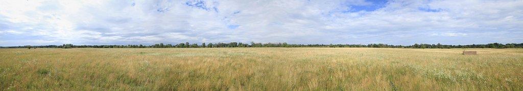 MG-5133-Panorama.jpg